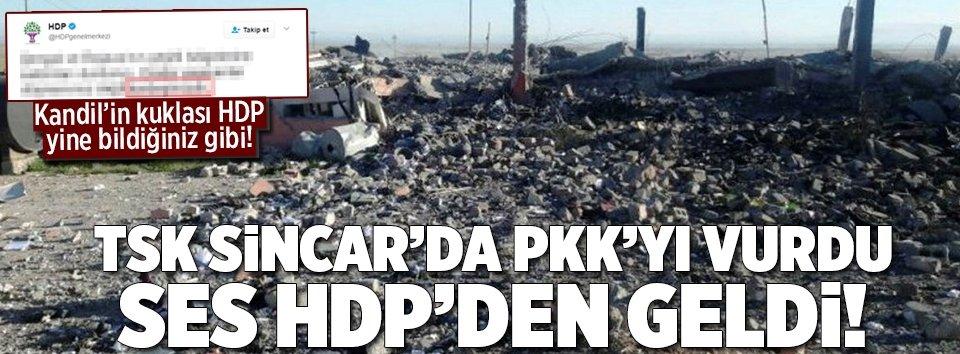 TSK, PKKlı teröristleri vurdu ses HDPden geldi